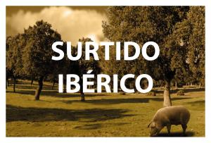 SURTIDO DE IBERICOS