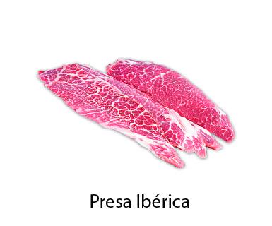 presa iberica