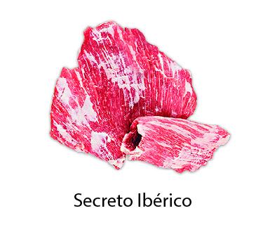 secreto iberico
